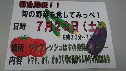 0723hasunosato.jpg