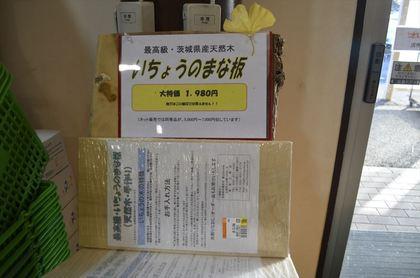_DSC1828_R.JPG