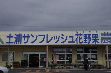 _IGP0457_R.JPG