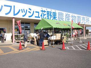 tiyoda0033.jpg