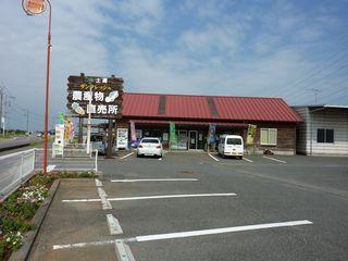 tsuchi001.jpg